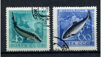 Bild von СССР 1959 г. Сол# 2331-2 • Промысловые рыбы • Used(ФГ) XF • полн. серия