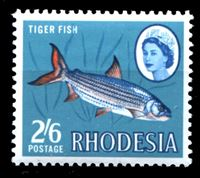 Picture of Родезия 1966 г. Gb# 384 • Елизавета II основной выпуск • 2sh. 6d. • рыба • MNH OG XF+