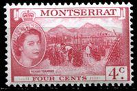 Image de Монтсеррат 1953-62 гг. Gb# 140 • Елизавета II основной выпуск • 4c. • уборка томатов • MNH OG XF
