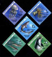 Изображение СССР 1991 г. Сол# 6279-83 • Фауна Черного моря • MNH OG XF • полн. серия