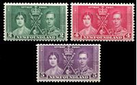 Изображение Ньюфаундленд 1937 г. Gb# 254-6 • Коронация Георга VI • королевская чета • MLH OG XF • полн. серия ( кат.- £5 )