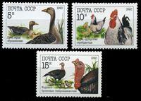 Bild von СССР 1990 г. Сол# 6223-5 • Домашние птицы • MNH OG XF • полн. серия
